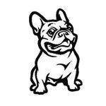 Accesorios para Bulldog Françes