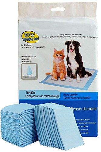 Accesorios para Cachorros