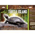 Accesorios para Tortugas